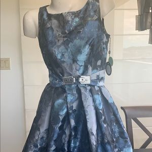 Blue and silver Eva Franco dress.